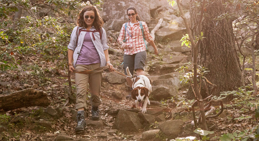 two hikers on the trail with their dog
