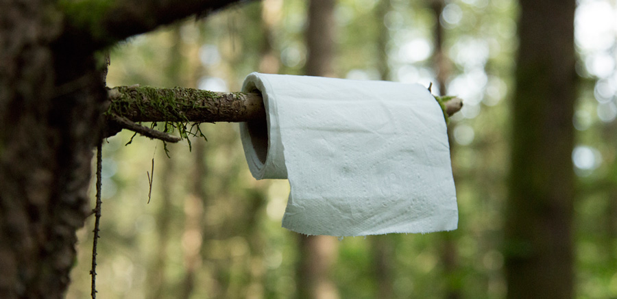 toilet paper placed on a tree branch in the backcountry