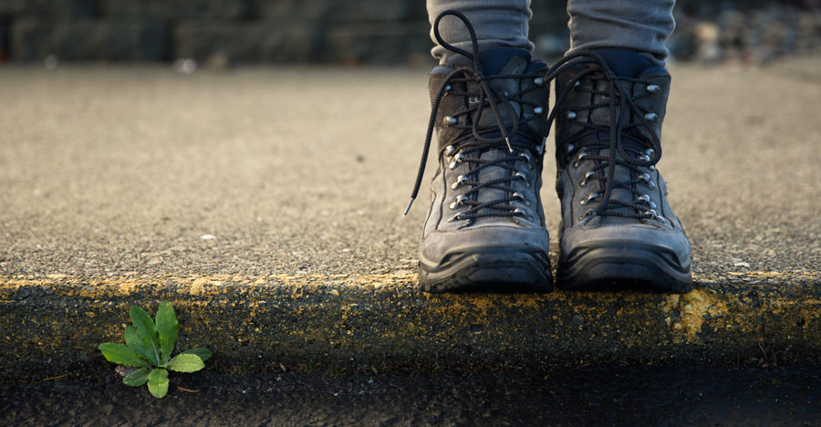 closeup of a hiker's boots standing on a curb