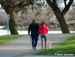 A couple walks their dog.
